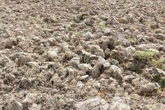 Bebauter Boden im Ackerland Lizenzfreies Stockbild
