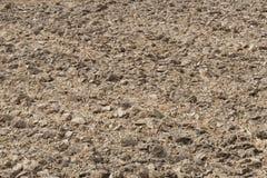 Bebauter Boden im Ackerland Lizenzfreies Stockfoto
