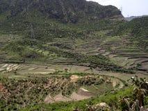 Bebautes Ackerland in der Berglandschaft, Äthiopien lizenzfreie stockfotos