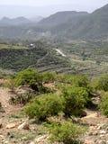 Bebautes Ackerland in der Berglandschaft, Äthiopien stockfotografie