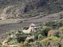Bebautes Ackerland in der Berglandschaft, Äthiopien stockfoto