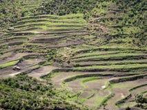 Bebautes Ackerland in der Berglandschaft, Äthiopien stockfotos