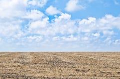 Bebautes Land, blauer Himmel Lizenzfreie Stockfotografie