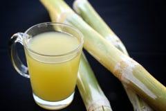 Bebe o cana-de-açúcar. Foto de Stock