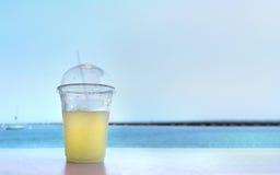 Bebendo uma bebida de refrescamento perto do lago Foto de Stock Royalty Free