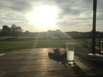 Beber no sol da tarde imagem de stock royalty free