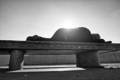Bebió los restos adultos en banco pedregoso en parque, rayos agudos del hombre del sol fotografía de archivo