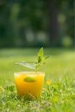 Bebida alaranjada do coctail Fotografia de Stock Royalty Free