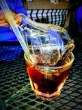 bebida alcaholic del bulbo del shilo Fotografía de archivo libre de regalías