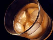 Bebida alcoólica Fotografia de Stock Royalty Free