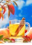 Bebida caliente con el zumo, el limón y el canela de manzana en otoño Fotos de archivo