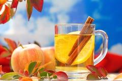 Bebida caliente con el zumo, el limón y el canela de manzana en otoño Imagen de archivo