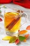 Bebida caliente con el zumo, el limón y el canela de manzana en otoño Imágenes de archivo libres de regalías