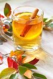 Bebida caliente con el zumo, el limón y el canela de manzana en otoño Imagenes de archivo