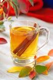 Bebida caliente con el zumo, el limón y el canela de manzana en otoño Fotografía de archivo