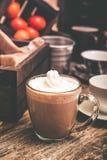 Bebida caliente del cacao imagen de archivo