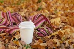 Bebida caliente en taza de papel con la bufanda brillante del color en fondo de oro caido de las hojas imágenes de archivo libres de regalías