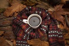 Bebida caliente en tiempo frío Fotografía de archivo libre de regalías