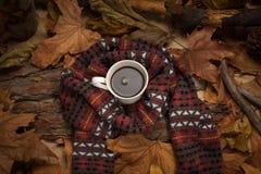 Bebida caliente en tiempo frío Imagenes de archivo