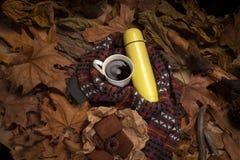 Bebida caliente en tiempo frío Imagen de archivo libre de regalías