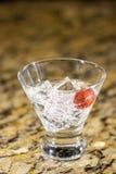 Bebida chispeante en el hielo con la fruta Foto de archivo