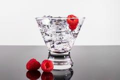Bebida chispeante en un vidrio de martini con las frambuesas Fotografía de archivo libre de regalías