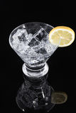 Bebida chispeante en un vidrio de martini con una rebanada del limón Foto de archivo