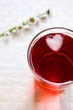 Bebida com cubo de gelo Fotografia de Stock Royalty Free