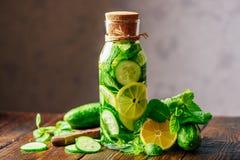 Bebida com limão, pepino e hortelã Fotografia de Stock Royalty Free