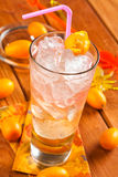 Bebida com rum e vodca Fotografia de Stock