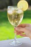 Bebida con el limón en vidrio de vino Fotografía de archivo libre de regalías