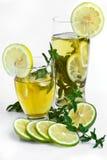 Bebida con el limón y ment frescos foto de archivo