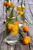 Bebida con la fruta cítrica y el romero Fotos de archivo
