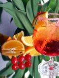 Bebida con la paja Fotos de archivo libres de regalías