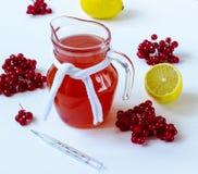 Bebida con una guelder-rosa y un limón Foto de archivo libre de regalías