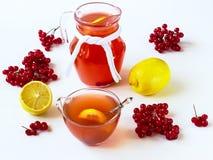 Bebida con una guelder-rosa y un limón Imágenes de archivo libres de regalías