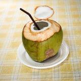 Bebida da água do coco fotografia de stock