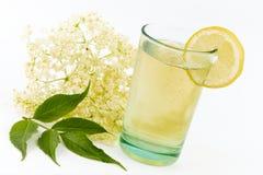 Bebida da flor da baga de sabugueiro Foto de Stock Royalty Free