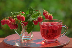 Bebida da framboesa e um ramalhete de framboesas dos galhos junto com bagas Imagem de Stock