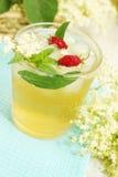 Bebida da pessoa idosa com morangos Imagem de Stock