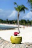 Bebida da praia Imagens de Stock