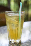 Bebida de Freshing en vidrio Fotografía de archivo