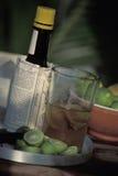 Bebida de la angostura y de la cal imagenes de archivo