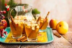 Bebida de la caída y del invierno Fotografía de archivo libre de regalías