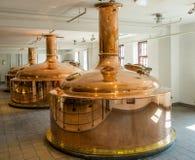 Bebida de la cerveza de Carlsberg Foto de archivo libre de regalías