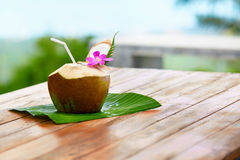 Bebida de la dieta Agua orgánica del coco, leche Nutrición, hidración H imagen de archivo