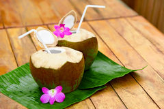 Bebida de la dieta Agua orgánica del coco, leche Nutrición, hidración H Fotos de archivo