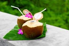 Bebida de la dieta Agua orgánica del coco, leche Nutrición, hidración H imágenes de archivo libres de regalías