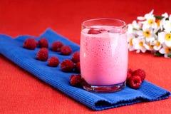 Bebida de la frambuesa Imagen de archivo libre de regalías