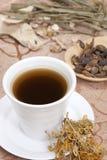 Bebida de la medicina china fotos de archivo libres de regalías